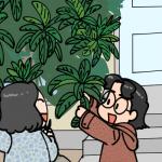 枇杷の葉よ、ありがとう